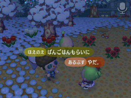 2008_1229クリスマス~年末0080