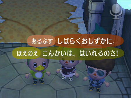 2008_1229クリスマス~年末0085