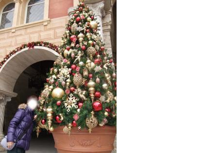 snap_ruinee428_2008124193845.jpg
