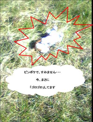 蝗ウ1_convert_20090110140838