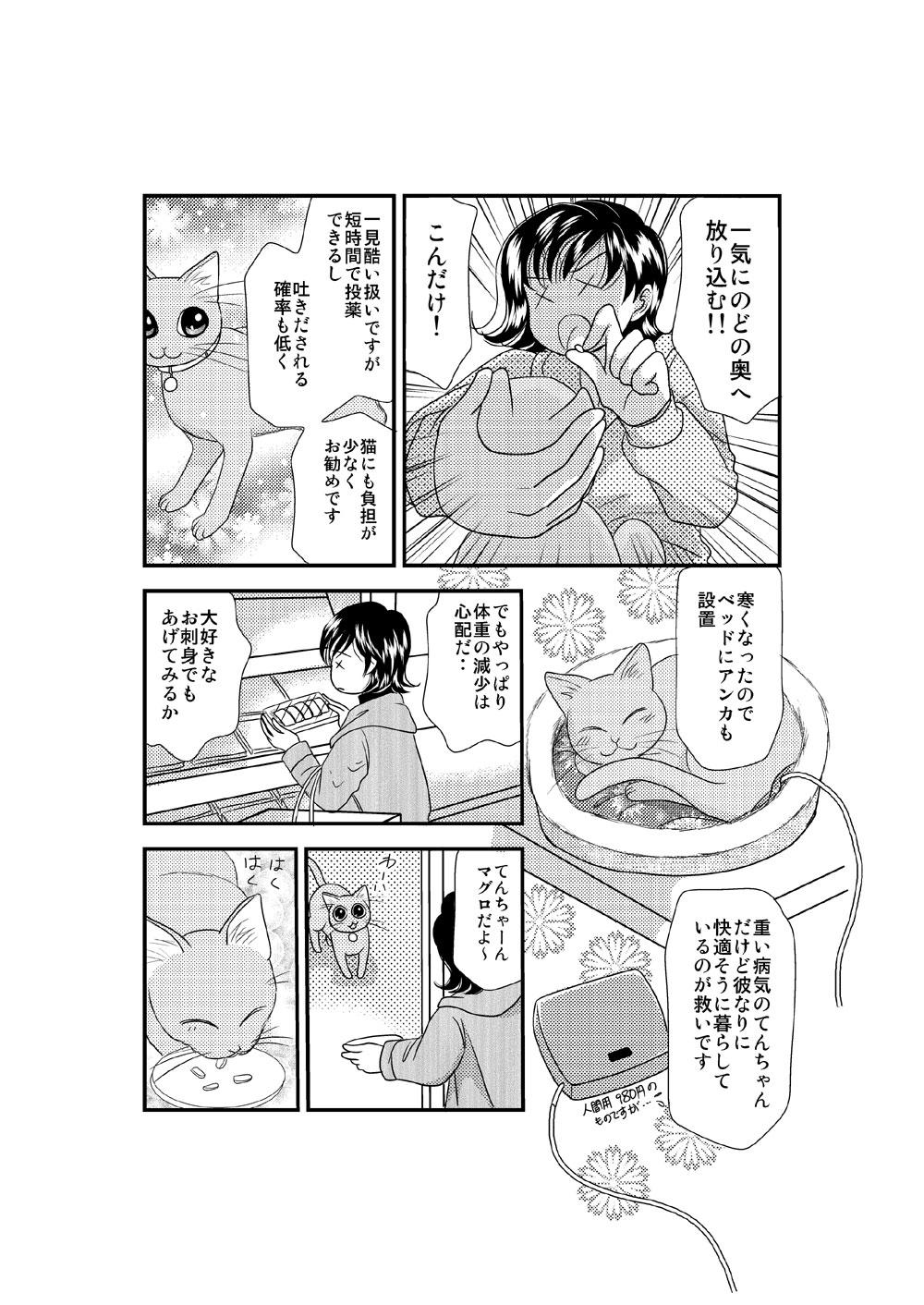 ねこころ 2011-2-3