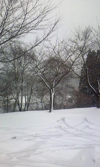 2010冬start