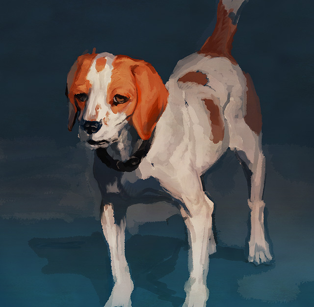 dog_20100327010343.jpg