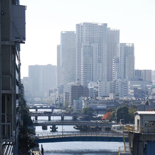 kawada_20101209210741.jpg