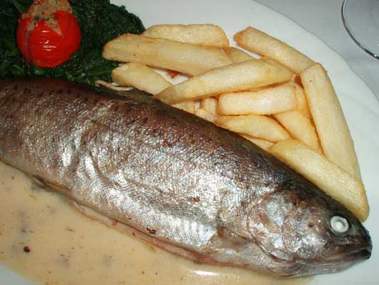セルの南で魚料理