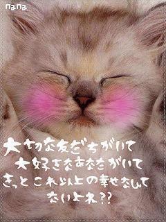 NoName_0223.jpg