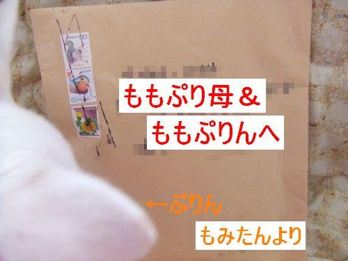 2009_0221ブログ0004