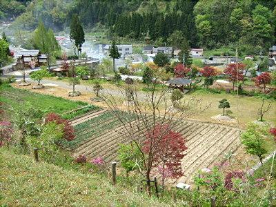 瑞宝園 つつじ 茶室 農作業 027