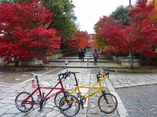 京都の紅葉2010