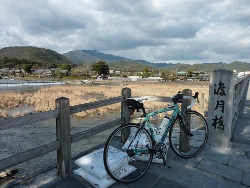 2011嵐山 (1)