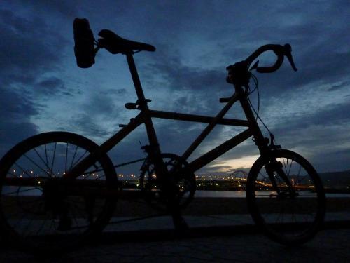 夜の鳴尾浜 (1)