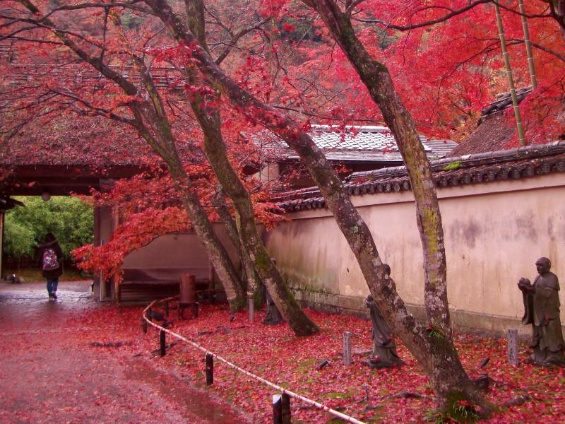 京都 宝厳院