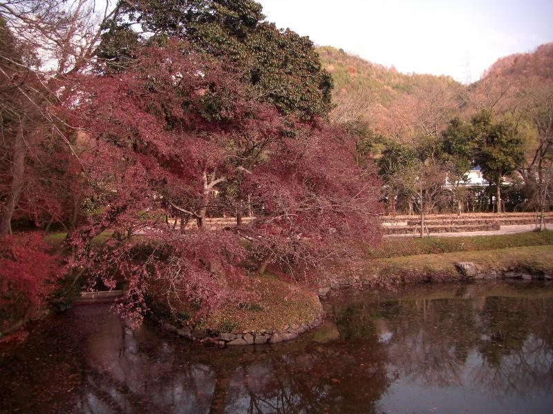 吉備路 近水園