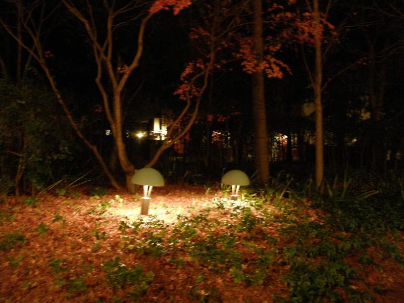 倉敷チボリ公園 夜景