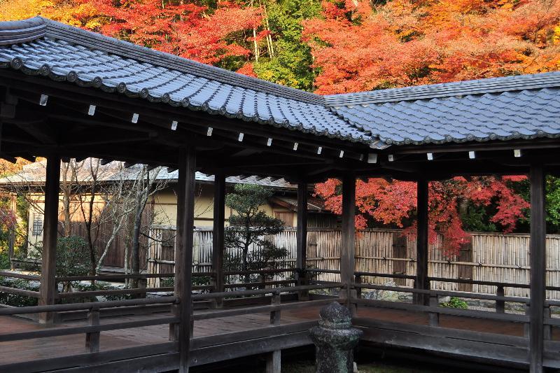 南禅寺 方丈庭園 紅葉