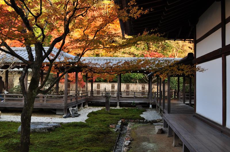 京都市 南禅寺 方丈庭園  紅葉