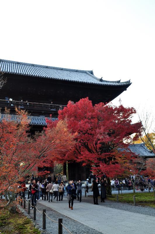 京都 南禅寺 紅葉