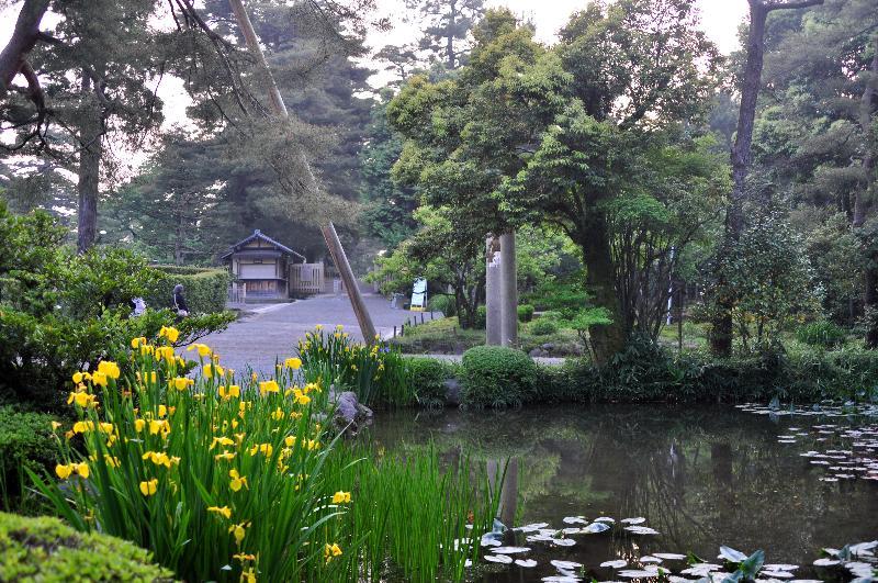 金沢市 兼六園 5月散策