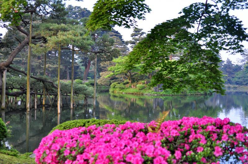 金沢市 兼六園 庭園風景