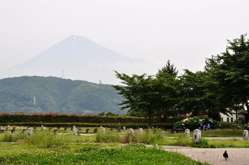 富士川サービスエリア 富士山