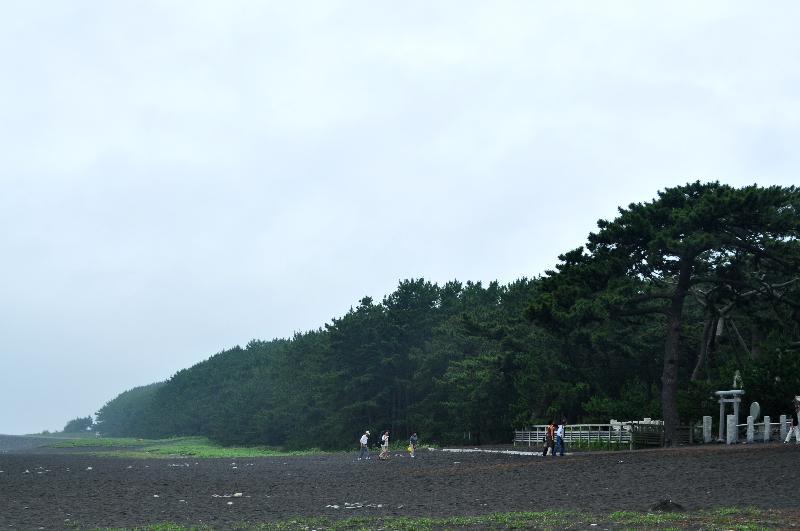 静岡市清水区 三保半島 三保の松原