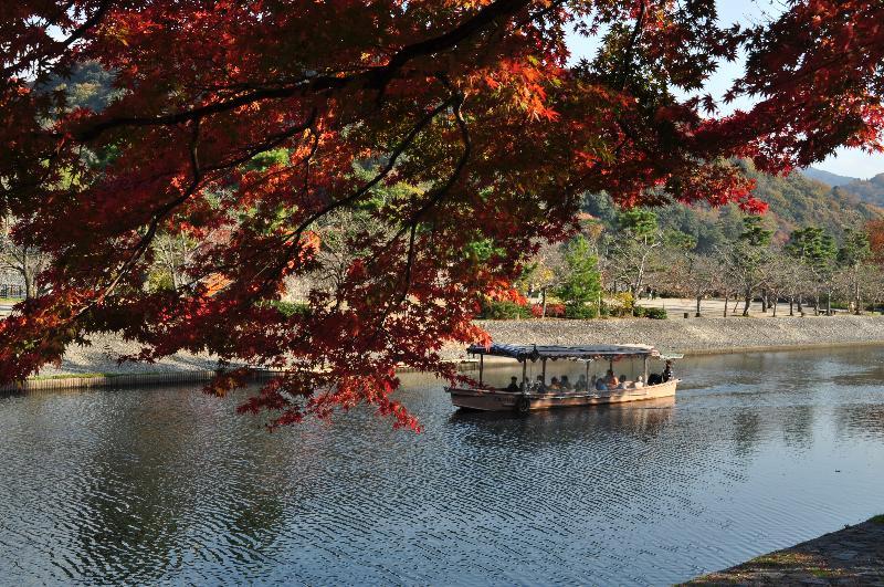 京都府宇治市 宇治橋付近 風景
