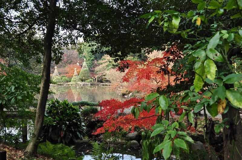 東京都北区西ヶ原 旧古河庭園