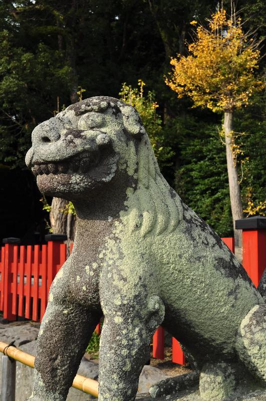 神奈川県鎌倉市雪ノ下 鶴岡八幡宮