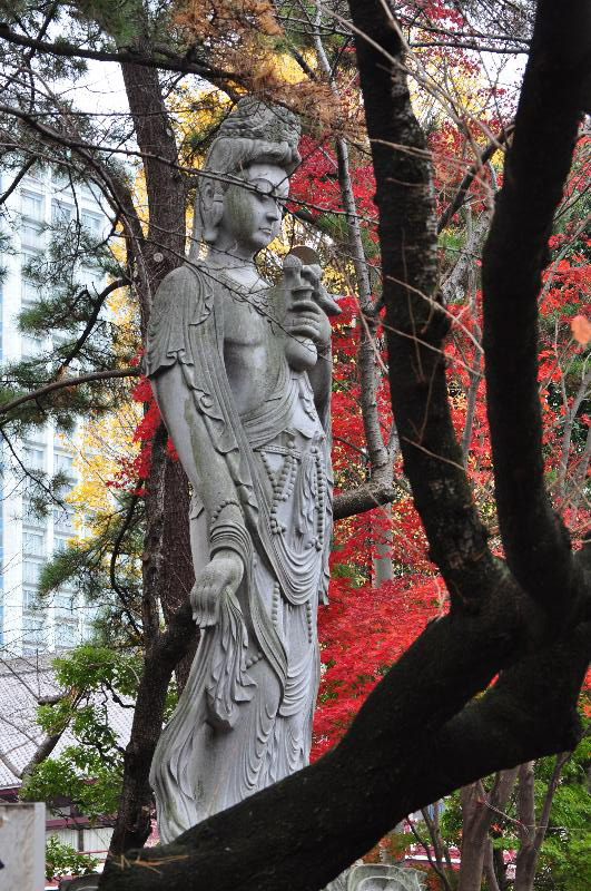 東京都港区芝公園 増上寺