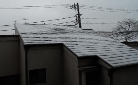 雪 01 2010.03.10
