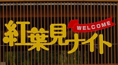 森林公園 01 2010.11.6