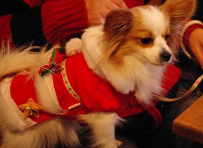 クリスマス 04 2010.12.25
