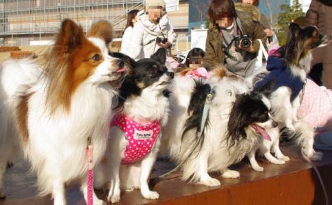 大オフ会 32 2011.1.22