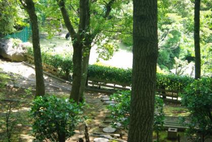 伊豆旅行 32 2011.5.7