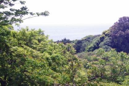 伊豆旅行 30 2011.5.7