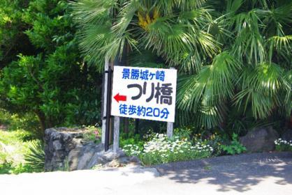 伊豆旅行 37 2011.5.7