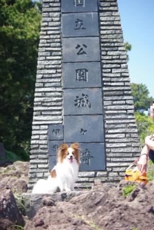 伊豆旅行 43 2011.5.7