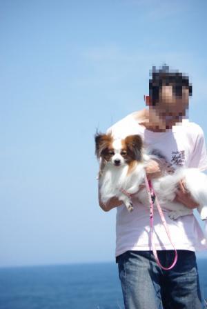 伊豆旅行 42 2011.5.7
