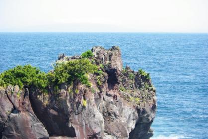 伊豆旅行 45 2011.5.7