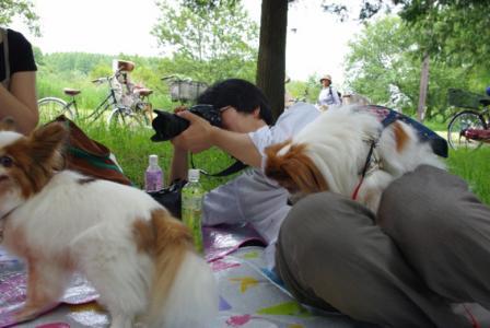 水元ランチ 07 2011.6.19