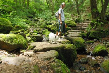 御岳登山 08 2011.7.18