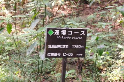 筑波ハイキング 16 2011.8.14
