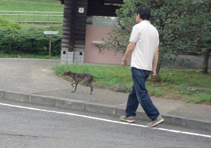 譲渡会へ 07 2011.9.11