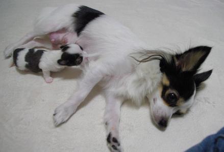 BABY 03 2011.11.20