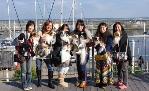 伊豆わっしょい 07 2011.11.26