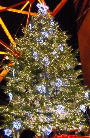 2011クリスマス 04 2011.12.24