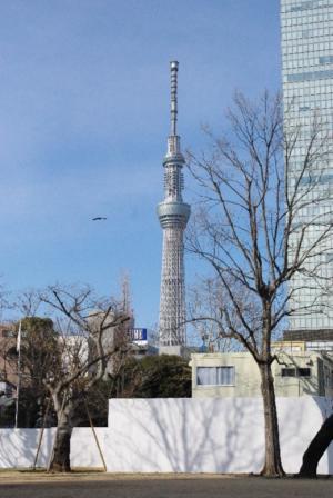 錦糸町オフ 13 2012.1.28