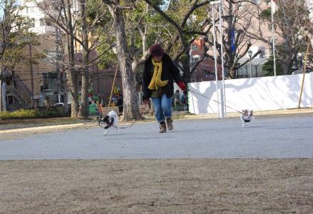 錦糸町オフ 14 2012.1.28