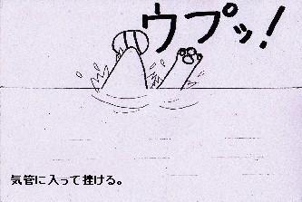海でボール 090703-3