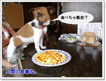 0907020の画 香川県 121